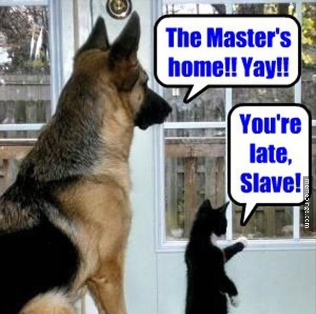 masters-home-youre-late-slave